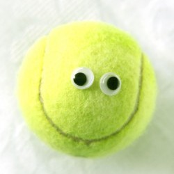 Ode to a Tennis Ball