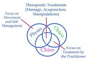 The Osteopractor, Chirotherapist, Physiopath overlap