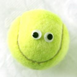 Ode to a Tennis Ball